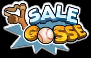 Sale_Gosse_logo_fr