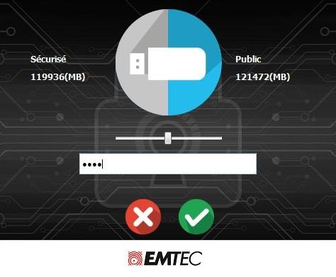 EmtecSpeedIn256-1