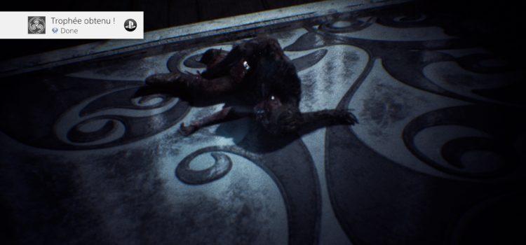 Trophée platine n°153 : Hellblade: Senua's Sacrifice sur PS4
