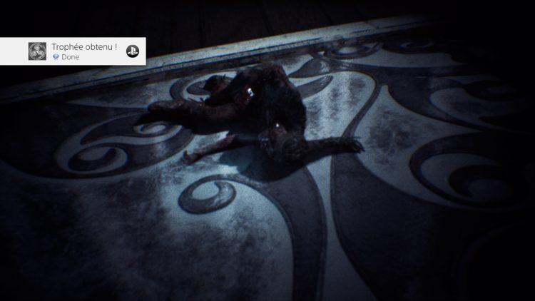 Trophée Platine Hellblade: Senua's Sacrifice